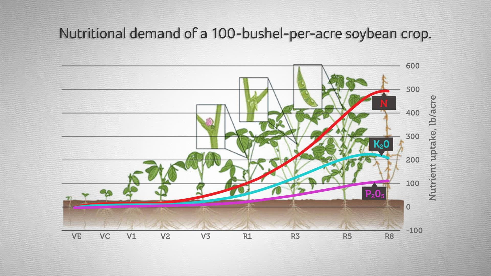 Ekonomics News This Basic Plot Roller Coaster Diagram Includes 4 Differentiated Figure 2 Nutritional Demand Of A 100 Bushel Per Acre Soybean Crop Bender Et Al 2015 Ipni 2014 Image Nordby 2004