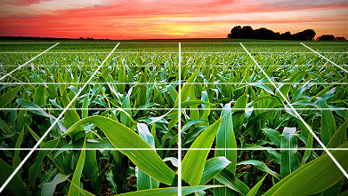 Precision Ag: Key Technology to Manage Your Farm
