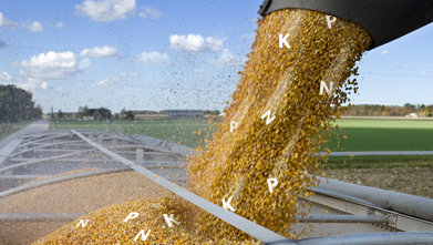 Nutrient Budgets Make Bigger Cash Budgets.