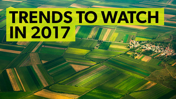 The Top Seven Trends Affecting Soil Fertility in 2017