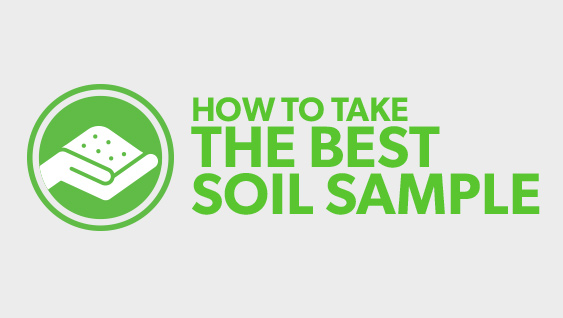 How to Take the Best Soil Sample