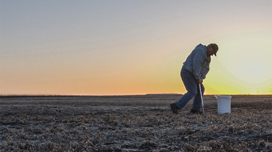 NDSU Raises K Critical Level in Certain Soils: Findings May Help Midwest Growers Earn Thousands More.