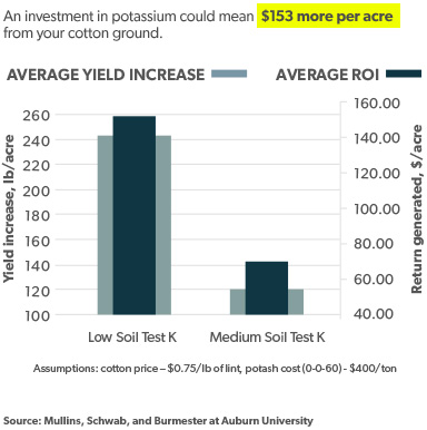 Average Yield and Return Generated from Investment in Potassium